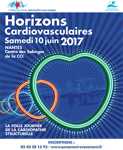 Visuel congrès HCV 2017