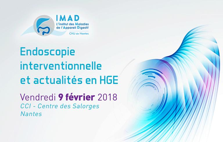Visuel Journée IMAD Nantes 2018
