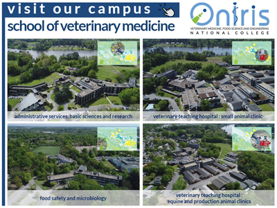 Visit our school of veterinary medicine in Nantes, France